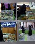 فعالیتهای پژوهشی مدرسه علمیه خواهران الزهرا(س) بندرعباس به مناسبت هفته کتاب